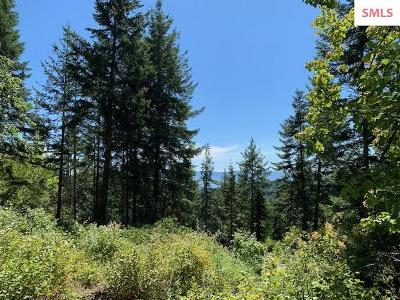 Sandpoint Residential Lots & Land For Sale: Nna F18 S Idaho Club Drive