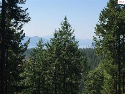 Sandpoint Residential Lots & Land For Sale: Naa Trappers Loop