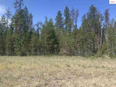 Priest Lake Residential Lots & Land For Sale: Nna Jacks Place