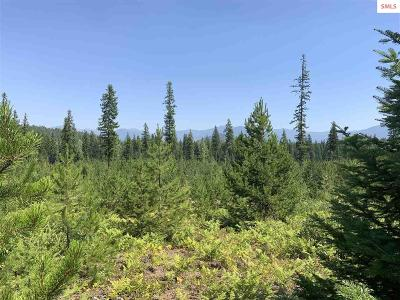 Priest River Residential Lots & Land For Sale: Nka Gleason McAbee Road