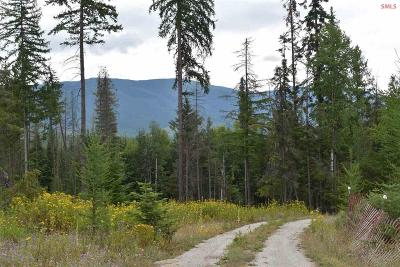 Sandpoint Residential Lots & Land For Sale: 123 Willies Way