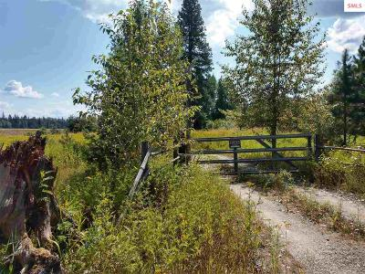 Sandpoint Residential Lots & Land For Sale: 118 Oliver Road