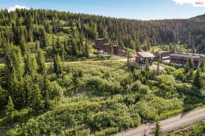 Sandpoint Residential Lots & Land For Sale: Nka Blizzard
