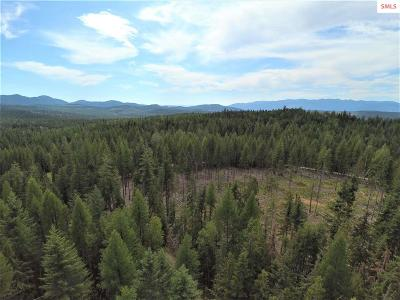 Sandpoint ID Residential Lots & Land For Sale: $200,000