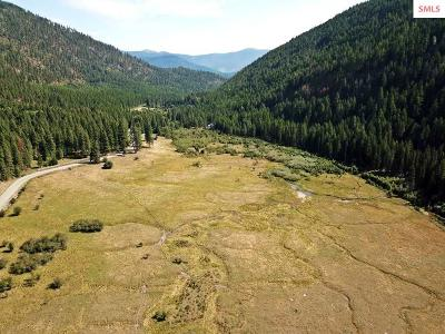 Bonners Ferry Residential Lots & Land For Sale: 7700 Meadow Creek Rd
