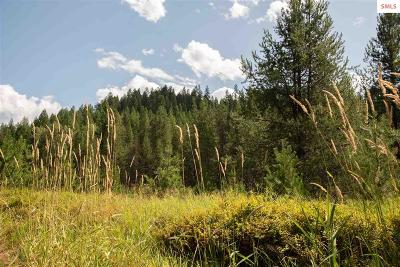 Priest River Residential Lots & Land For Sale: Kna Dubuis Creek Road