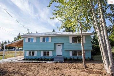 Single Family Home For Sale: 376 Warren Ave