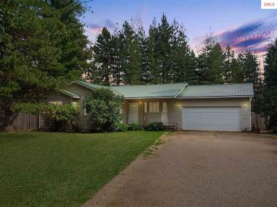 Sandpoint Single Family Home For Sale: 302 Jeffrey Drive
