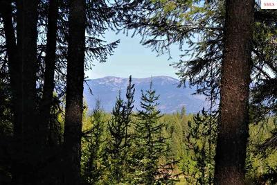 Sandpoint Residential Lots & Land For Sale: B1 S Idaho Club Dr