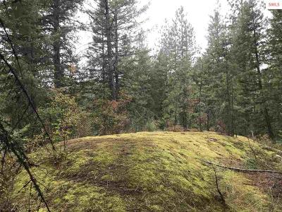 Sandpoint Residential Lots & Land For Sale: 68 Riverview Circle