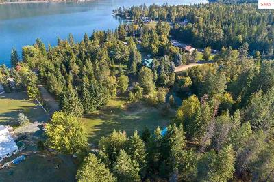 Priest Lake, Priest River Single Family Home For Sale: 48 Birch Beauty