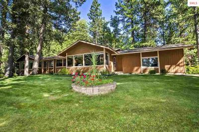 Sandpoint Single Family Home For Sale: 91 Oden Bay Dr.