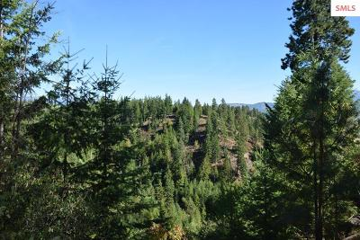 Bonners Ferry Residential Lots & Land For Sale: Parcel 9 Sunrise Rd