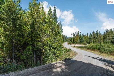 Priest River Residential Lots & Land For Sale: Lot 1 Elicia Lane