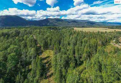 Sandpoint Residential Lots & Land For Sale: Lot 11 Craigs Forest Tract