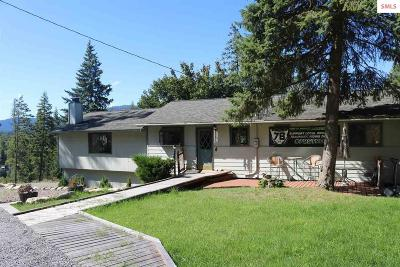 Sagle Single Family Home For Sale: 1014 Lakeshore Drive