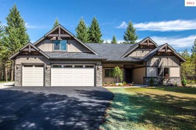 Rathdrum Single Family Home For Sale: 859 E Chilco Rd