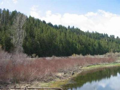 Bonners Ferry ID Residential Lots & Land For Sale: $25,000