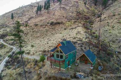 Mccall Single Family Home For Sale: 65 Dustin Road