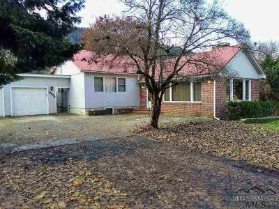 Orofino Single Family Home For Sale: 10520 Hwy 12