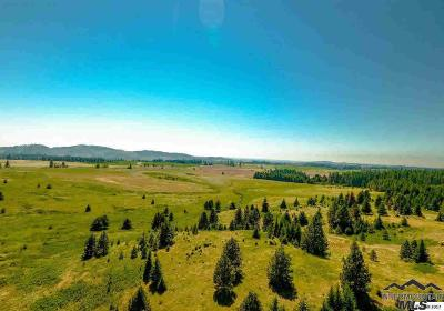 Peck, Pierce, Weippe Residential Lots & Land For Sale: Highway 11