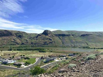 Asotin Residential Lots & Land For Sale: 1479 River Ridge Drive