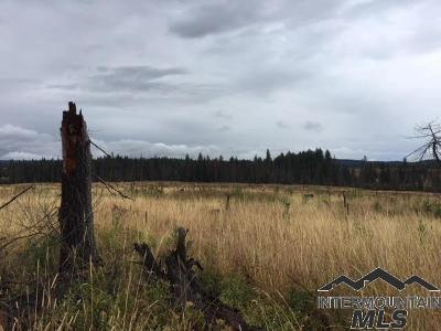 Peck, Pierce, Weippe Residential Lots & Land For Sale: Wilson Rd