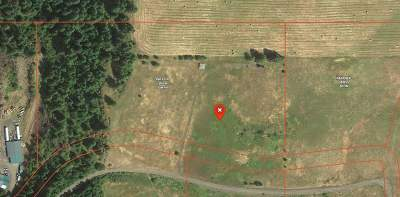 Kamiah Residential Lots & Land For Sale: 299 Shenandoah Drive