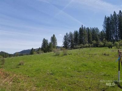Orofino Residential Lots & Land For Sale: 2 Royal Plaza Drive