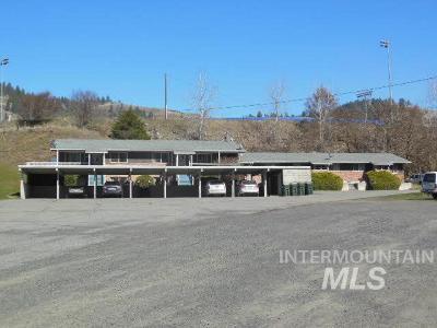 Orofino Multi Family Home For Sale: 1175 Riverside Avenue
