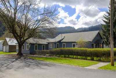 Orofino Single Family Home For Sale: 533 Brown Avenue