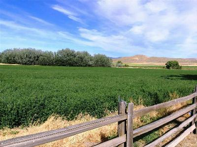 Payette Farm & Ranch For Sale: 6447 Little Willow Rd