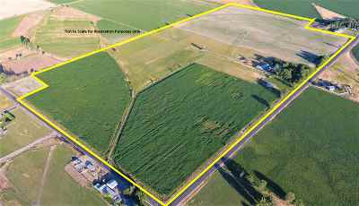 Buhl ID Farm & Ranch For Sale: $699,000