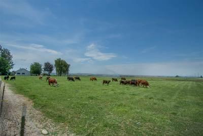 Emmett Farm & Ranch For Sale: 8855 Merril Rd