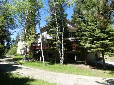 McCall ID Single Family Home For Sale: $1,045,000