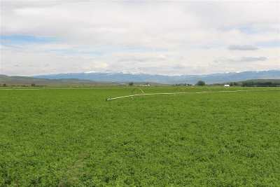 Cambridge Farm & Ranch For Sale: 3265 Us 95