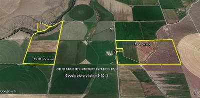 Buhl ID Farm & Ranch For Sale: $620,000