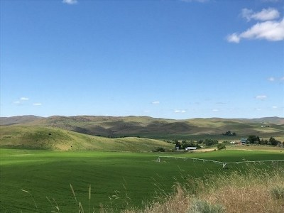 Weiser Farm & Ranch For Sale: 1836 Cemetery Road