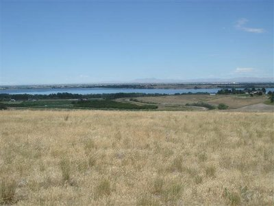 Nampa Residential Lots & Land For Sale: Lewis Lane