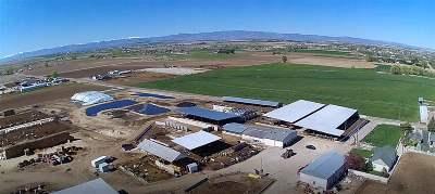 Kuna Farm & Ranch For Sale: 7456 S Happy Valley Rd.