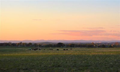 Twin Falls ID Farm & Ranch For Sale: $5,950,000