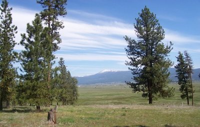 New Meadows ID Residential Lots & Land For Sale: $149,900