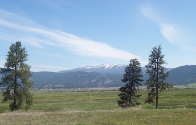New Meadows ID Residential Lots & Land For Sale: $109,900