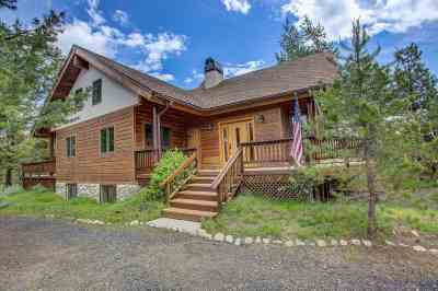 McCall Single Family Home For Sale: 54 Scheline Lane
