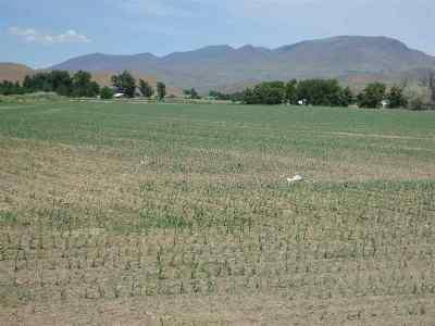 Emmett Farm & Ranch For Sale: 2670 Gem Ave