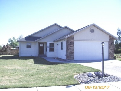 Shoshone Single Family Home For Sale: 111 River View Drive