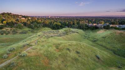 Boise Residential Lots & Land For Sale: 3051 N Lancaster Drive