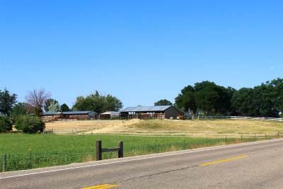 Nampa Farm & Ranch For Sale: 4001 E Lewis Lane