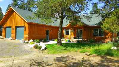 McCall Single Family Home For Sale: 150 Current