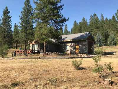 New Meadows Single Family Home For Sale: 3281 Big Creek Road